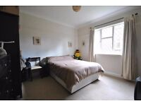 Double Spacious Room in Raynes Park Flat