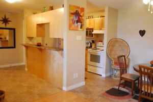 BEAUTIFUL NEW 1 Bed Apt 381-3333 **Washer & Dryer Incl.