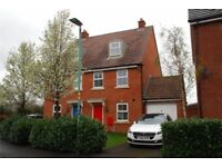 (Mon-fri) Double bed/ double room in shared house