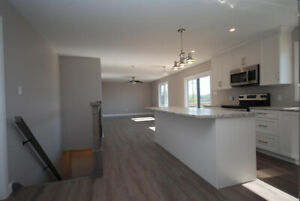 NEW MODERN TOWNHOMES FOR RENT IN COBDEN FOR MATURE ADULTS 55+