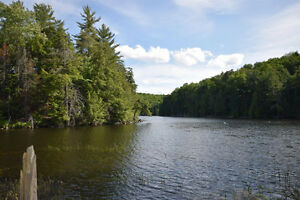 Haliburton Real Estate Team-68 Acres on West Lake-$195,000 Kawartha Lakes Peterborough Area image 4