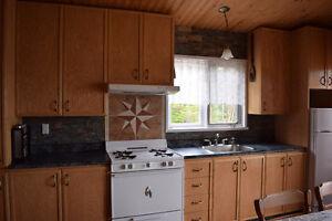 chalet à vendre (seul sur le lac) mont-valin Saguenay Saguenay-Lac-Saint-Jean image 5