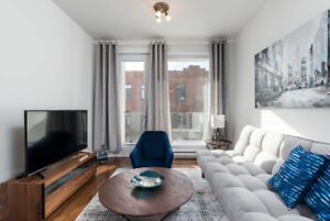 Stunning 2bdr on the Plateau Mont-Royal