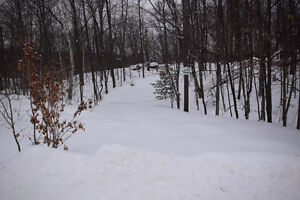 Haliburton Real Estate Team - Lot Near Halls Lake - $23,000