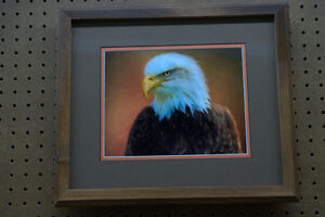 professionally framed and matted pictures  SALE Sarnia Sarnia Area image 1