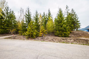 2477 Waverly Drive, Blind Bay- 36 acre lake view lot Revelstoke British Columbia image 10