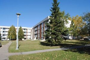 Two bedroom apartment utilities&parking included 11255 31ave