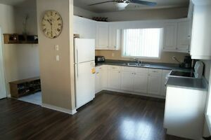 4 large rooms for rent. Choose your lease!