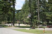 NOW FOR ONLY $39,900+ CLAIM YOUR RV LOT IN RADIUM BC