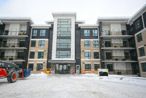 *** Brand New *** 4 Bed 4 Bath Student Condo on Gordon St