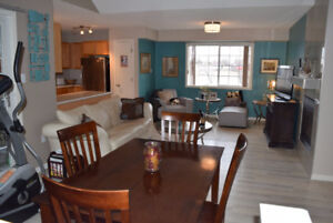 Furnished Condo Mid-December or Jan 1