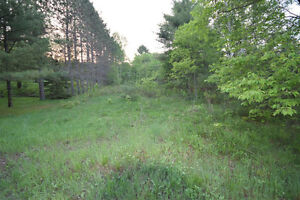Haliburton Real Estate Team - Minden Area Lot - $39,900