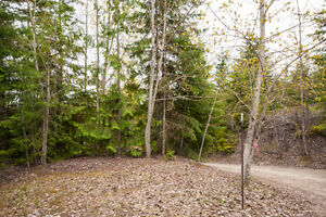 2477 Waverly Drive, Blind Bay- 36 acre lake view lot