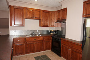 STUDIO SUITE on SE Hill - BEAUTIFUL LARGE KITCHEN