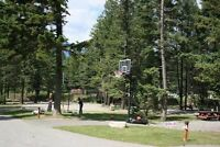 NOW ONLY $39,900+ FOR A RV LOT / SITE RADIUM BC