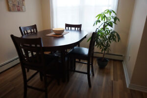 Kitchen Table and Chairs - Barely Used