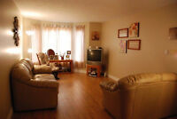 (Heat incl. option) LARGE 2 Bed. Apt. NO CARPETS 381-3333