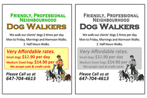 READY WHEN YOU ARE ! TORONTO ETOBICOKE DOG WALKERS