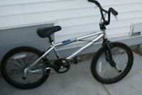 Haro BMX(chrome frame)