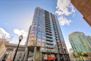 Modern 2 Bedroom Furnished Downtown Condo