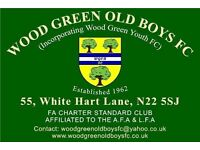 Wood Green Old Boys Football Club - Recruting Players Now
