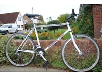 Bargain Adult Diamondback bike