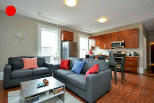 Fully Furnished Three-Bedroom Apartments