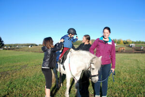 Horse and ponies required for therapeutic riding - lease