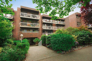 View ALL 1 Bedroom Fairview Homes $400K