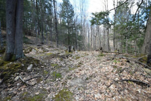 Haliburton Real Estate Team- Twist Lane Lot