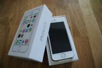 Gold and White iPhone 5S plus Otterbox case