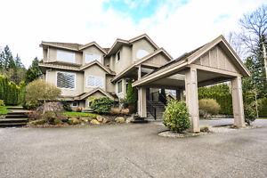 NEW LISTING: Beautiful 7000 Sq Ft Home in South Surrey / White R