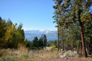 PRICE REDUCED!! Building Lot with Lakeview in Naramata