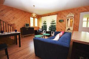 Haliburton Real Estate Team-Cottage on 4 Acres-$589,000 Kawartha Lakes Peterborough Area image 2