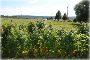 Pasture land acreage size wanted for purchase in 100 mile area