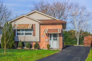 Lovely raised ranch is nestled on a large lot London Ontario image 1