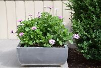 Modern pots with flowers