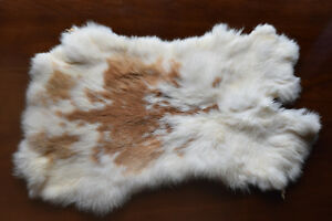GENUINE NATURAL RABBIT SKIN FUR PELTS [X3] $25/EACH Kingston Kingston Area image 2