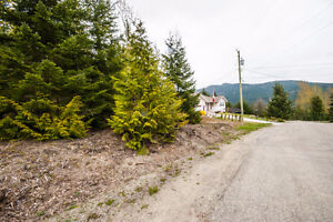 2477 Waverly Drive, Blind Bay- 36 acre lake view lot Revelstoke British Columbia image 5