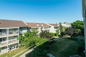 1 Bed/1 Bath (all utilities included) Condo in Sherwood Park