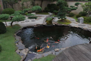 Pond Liners 30 and 40 mil Black PVC