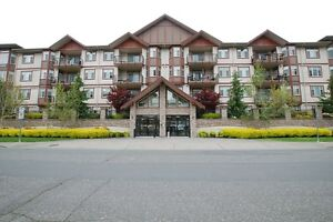 ONE OF A KIND 3 bedroom luxurious Chilliwack corner unit!