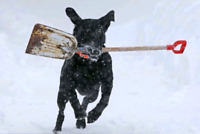 *Snow Removal.* Sign-up NOW ! *$80/Month.* ~> Call Us Today!=]