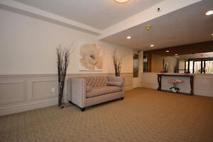 Newly Renovated, Spacious, Modern Suites! GREAT LOCATION!