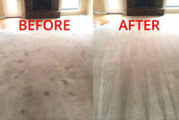 $139 FULL HOUSE CARPET CLEANING  SPECIAL!!!