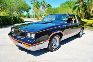 Looking for 1983 Hurst Olds