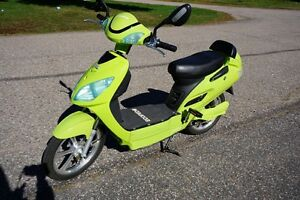 Ecoped electric bike