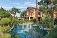 Westgate Flamingo Bay Vegas Sale / Rent or Trade for Pusher
