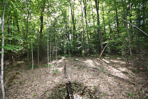 Haliburton Real Estate Team-68 Acres on West Lake-$195,000 Kawartha Lakes Peterborough Area image 2