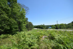 Haliburton Real Estate Team- Country Road 21, 88 Acres